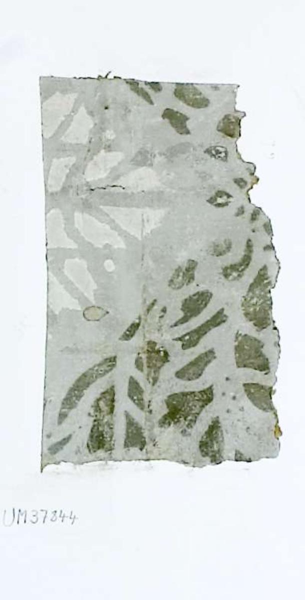 Tapetprov, schablonmålat(?) mönster i grått och vitt. Handskriven text på baksidan av kartongen: 194 Kv. S:t Johannes Stora Huset ö.b. Rum 5.