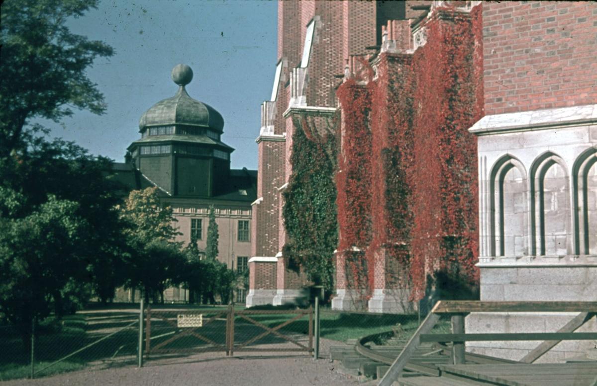 Gustavianum och Uppsala domkyrka, Uppsala 1945 - 1950