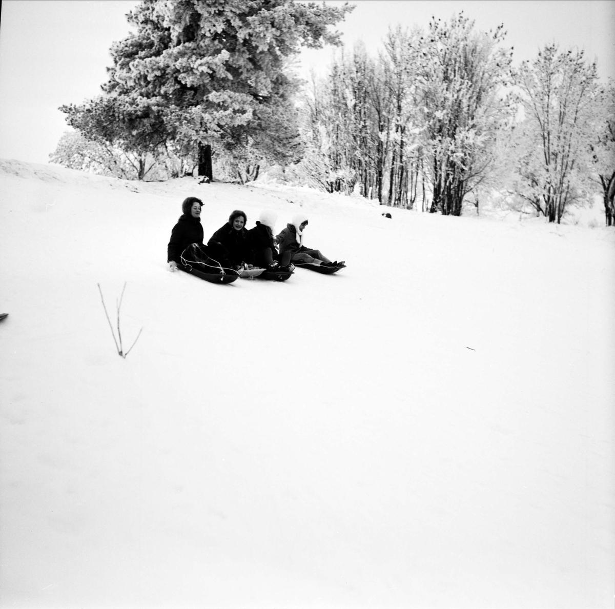 """""""Tefatsåkare i Torslunda"""", Tierp, Uppland januari 1968"""