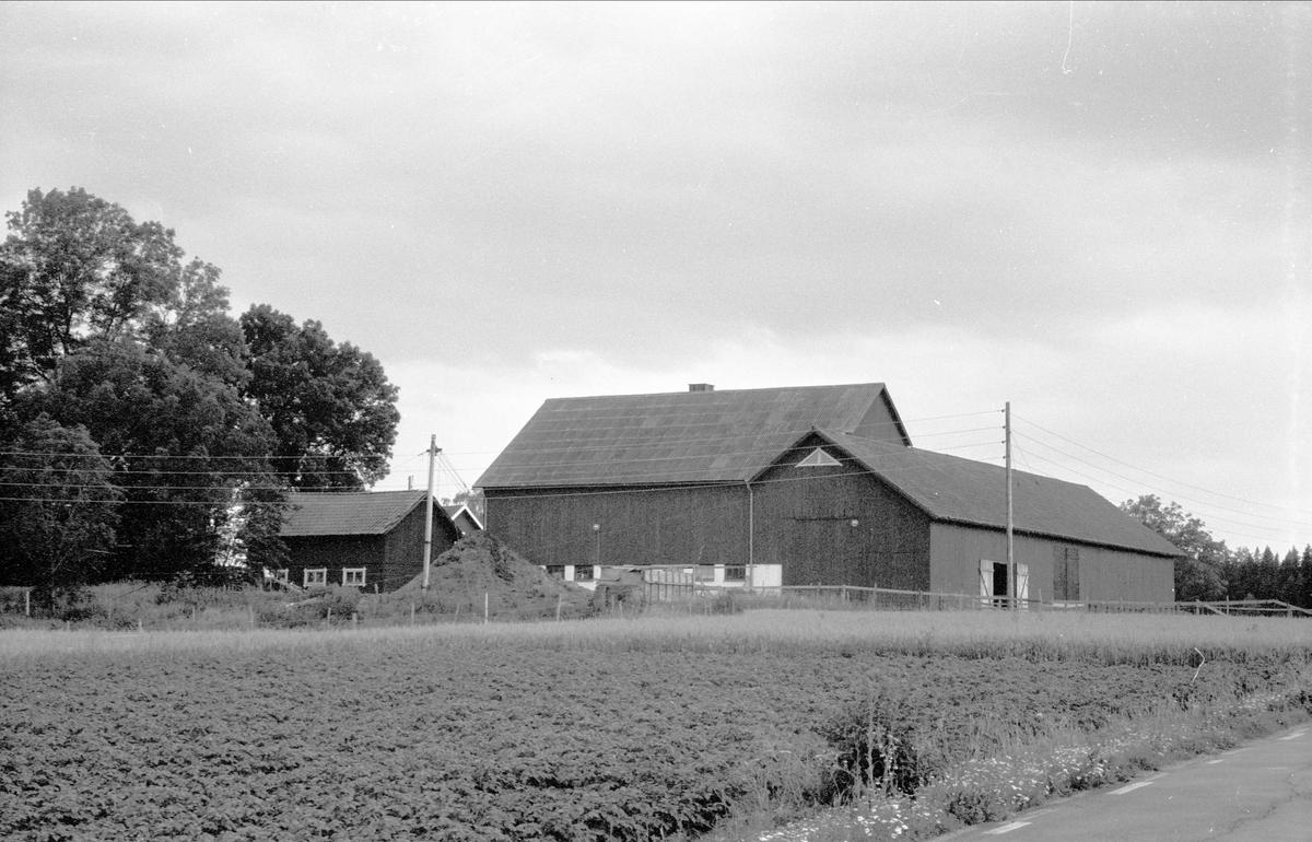 Vy över Svista 4:1och 6:1, Bälinge socken, Uppland 1976