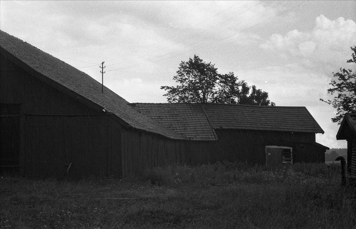 Ladugård och lada, Lillgrimsta, Ärentuna socken, Uppland 1976