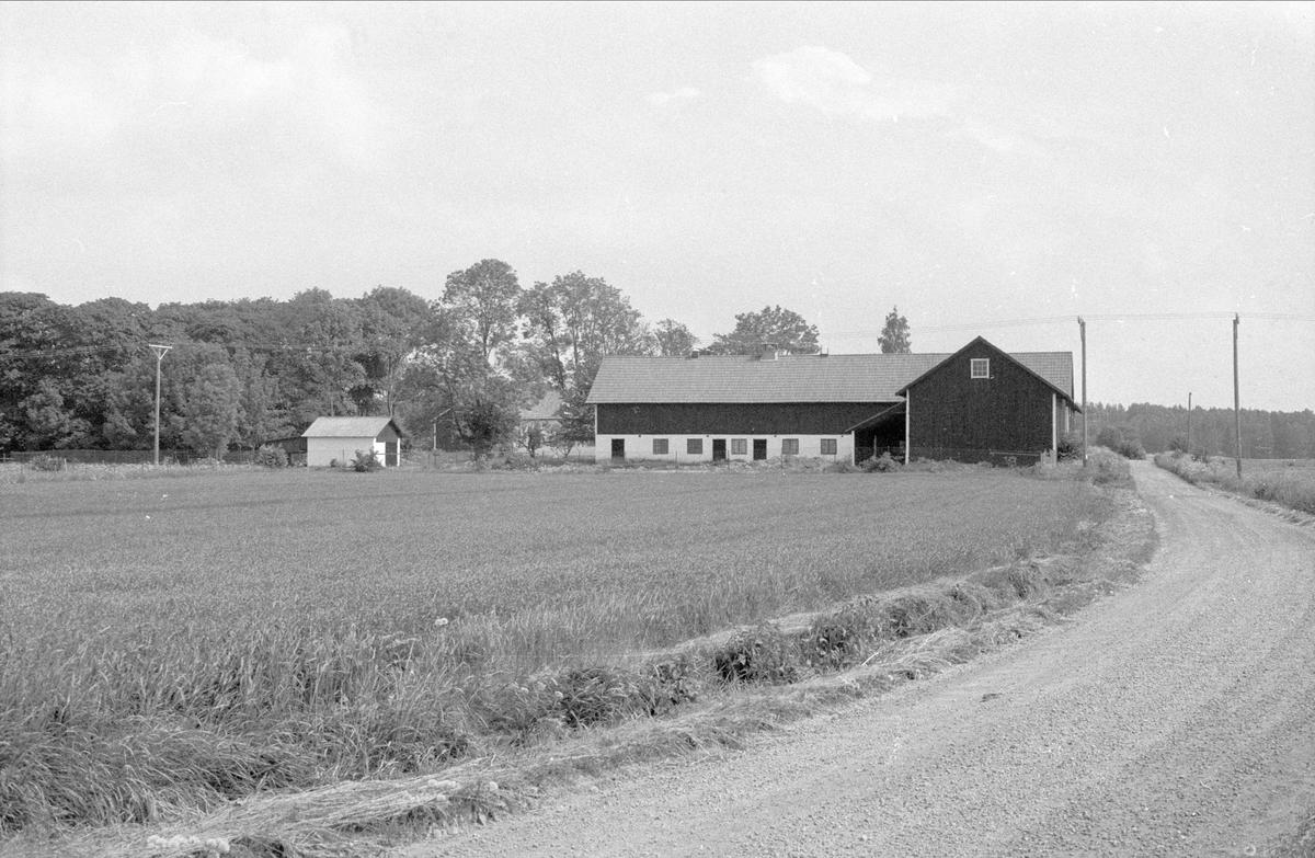 Uthus, ladugård och loge, Rörby 7:2, Bälinge socken, Uppland 1983
