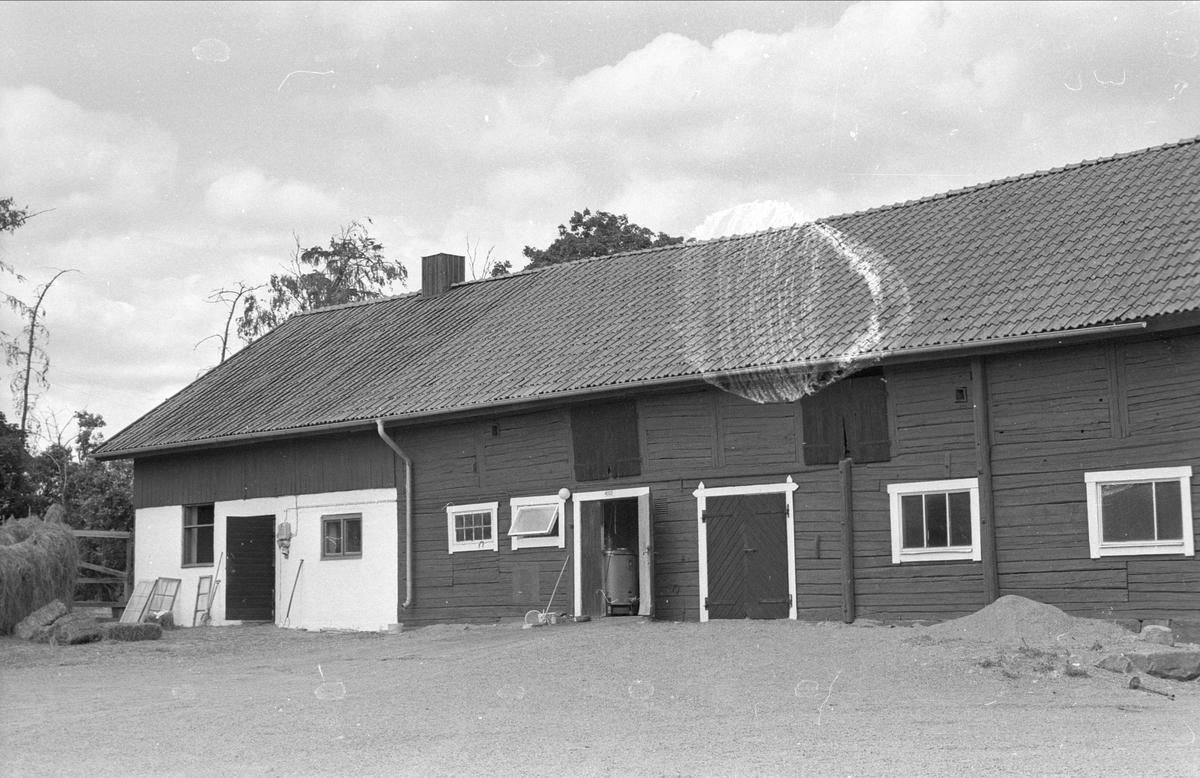 Ladugård och stall med mera, Bärby 1:1, Bärby, Danmarks socken, Uppland 1977