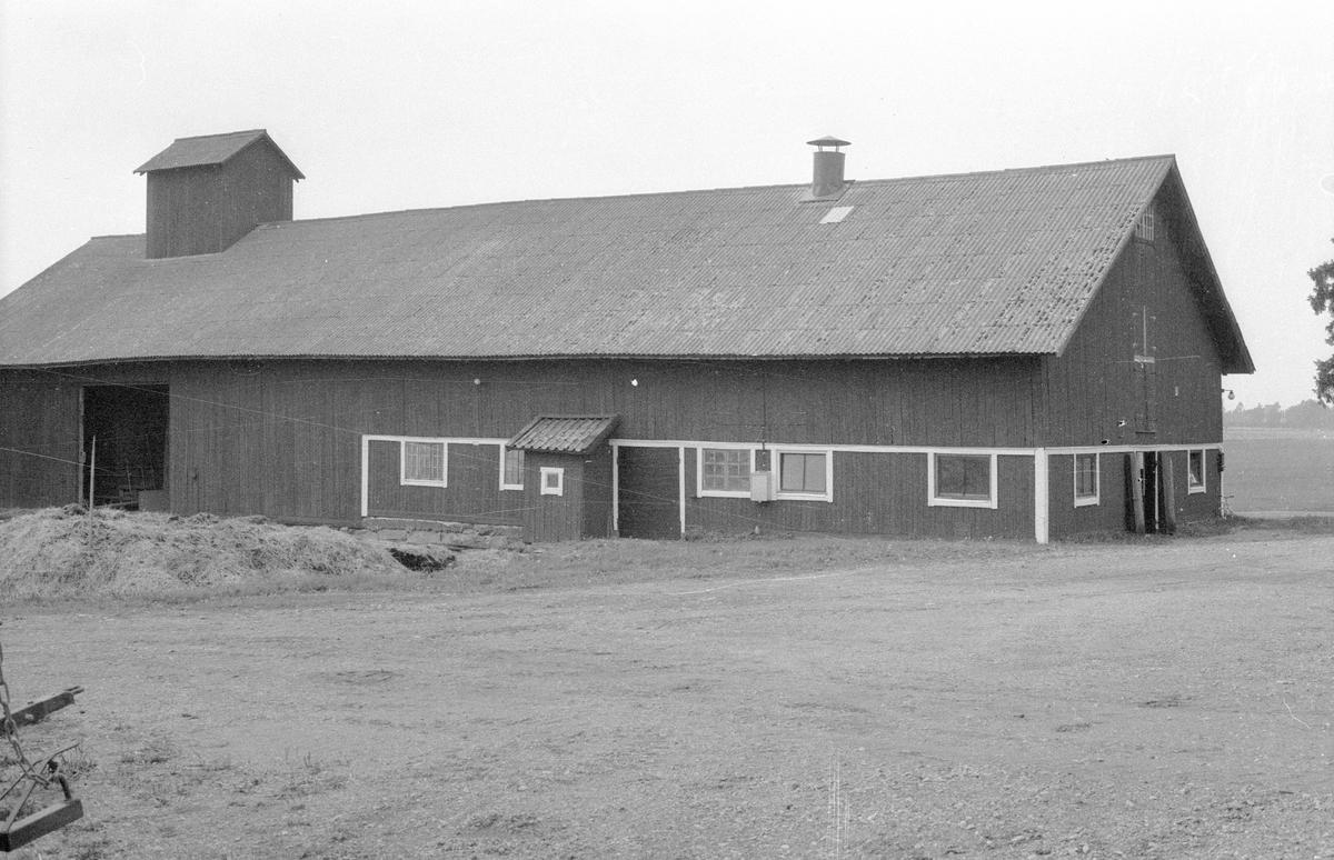 Ladugård och loge, Eriksberg, Gamla Uppsala 77:4, Gamla Uppsala, Gamla Uppsala socken, Uppland 1982