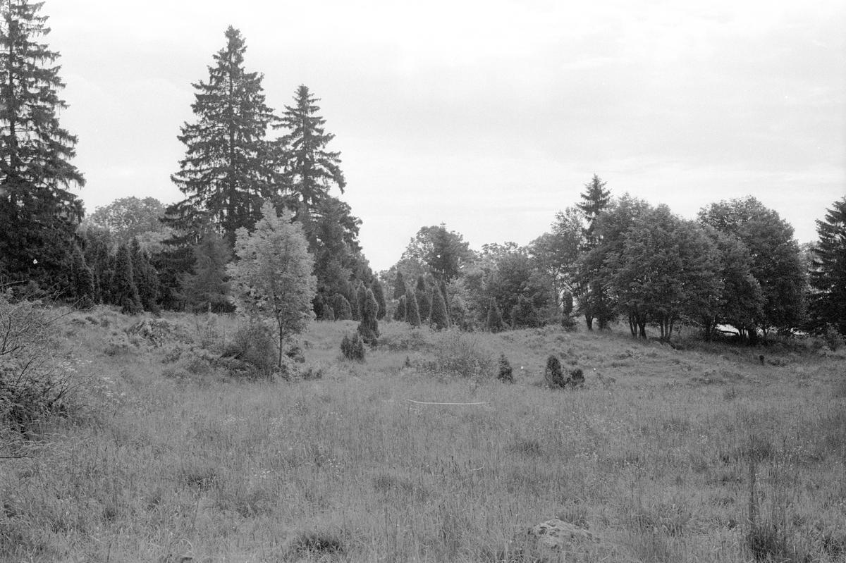 Beteshage, Svanbol 1:1, Svanbol, Knutby socken, Uppland 1987