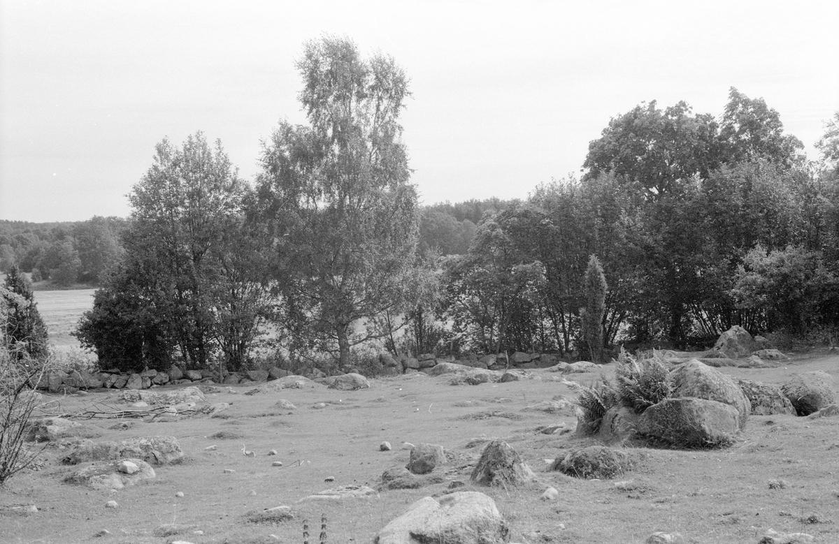 Beteshage, Bergalund, Ösby, Knutby socken, Uppland 1987