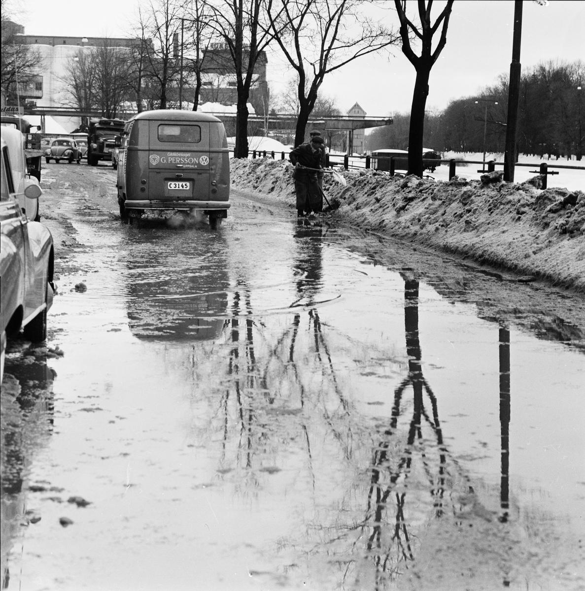 Snöskottning i blötsnö, Uppsala januari 1959