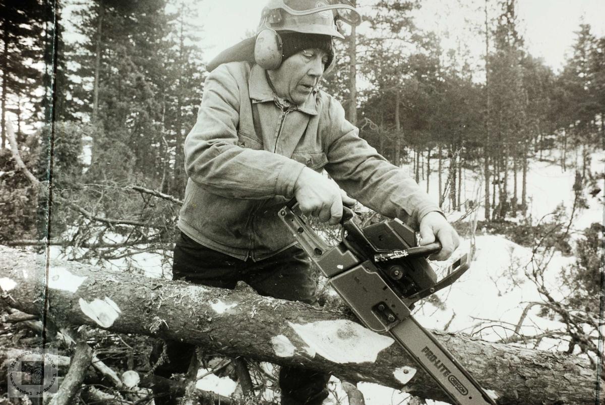 Ola Ågedal i gang med skogsarbeidet som han liker best.