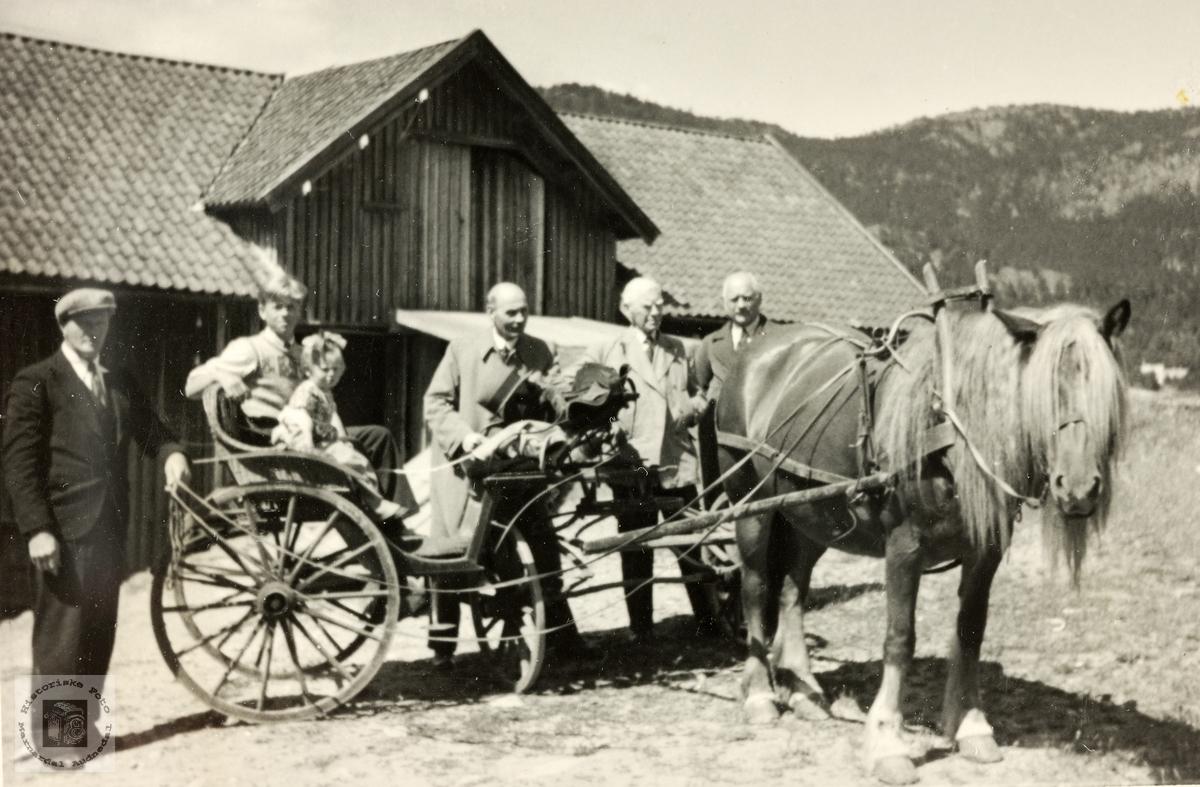 Hesten klargjort for kyrkjereis.