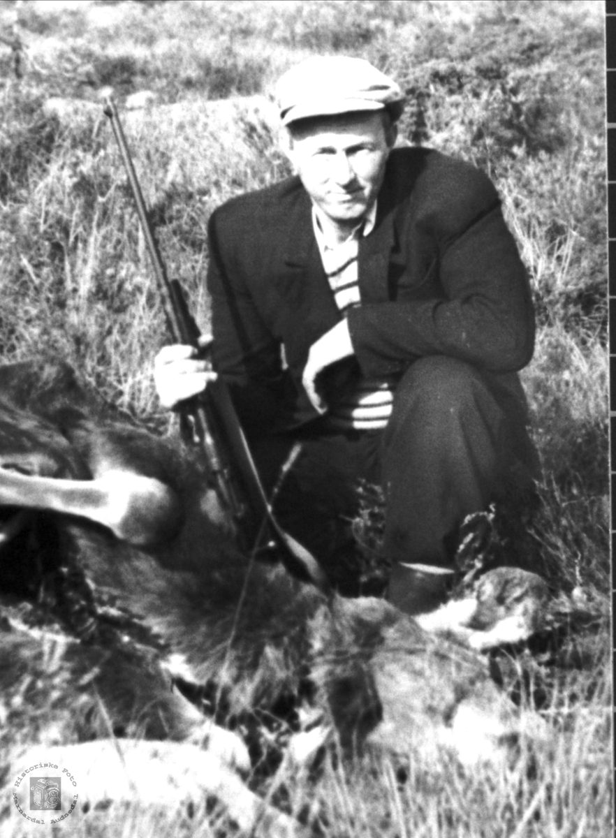 Knut Stedjan har skutt elg, Bjelland.