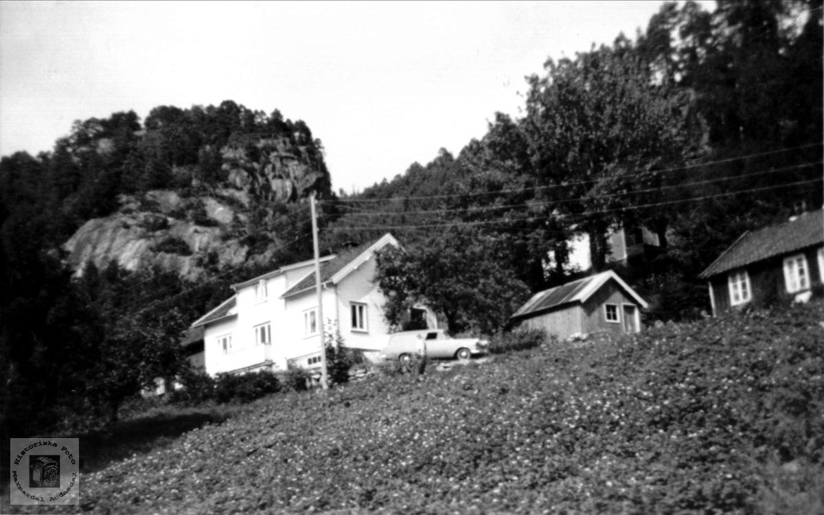 Einerhagen, Skjævesland i Øyslebø.