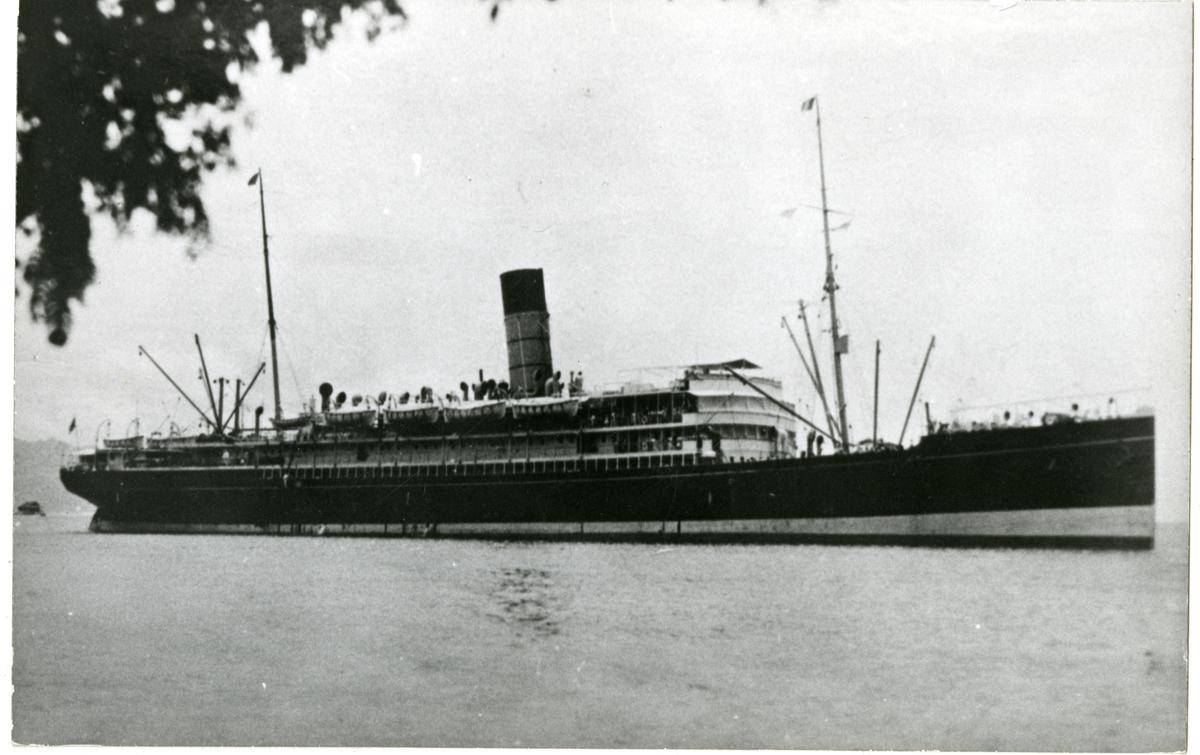 D/S Tahiti (b. 1904, Alex. Stephen & Sons, Glasgow)
