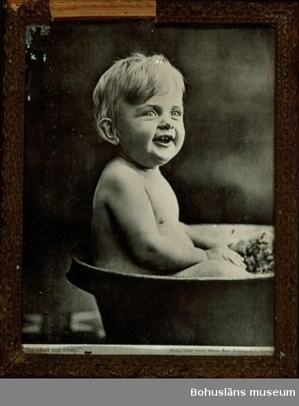 """594 Landskap BOHUSLÄN  Tryck av gosse i badbalja, text nedtill: """"Nu skall jag bada!"""" """"Förlag Eskil Holm. Foto Hoffotograf L.Larsson"""". Ramad med glas och träram med förgyllt gipsornament, delvis söndrigt."""