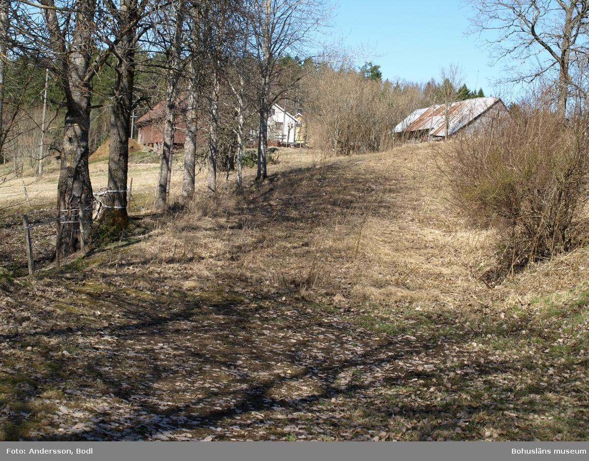 Vid gårdarna i Årbol följer den gamla vägsträckningen en mindre bäck och åkerkanterna upp mot gårdshusen. Foto: Bodil Andersson, Østfoldmuseene/Halden historiske Samlinger.