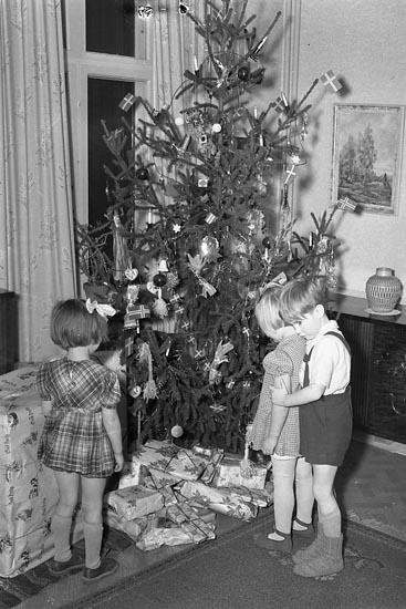 Tre förväntansfulla barn väntar på julklappsutdelning, december 1949