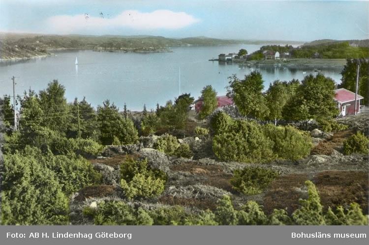 "Tryckt text på kortet: ""Svanesund.""  ""Förlag Firma H. Lindenhag, Göteborg."""