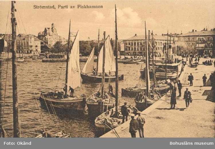 """Tryckt text på kortet: """"Strömstad. Parti av fiskehamnen."""""""