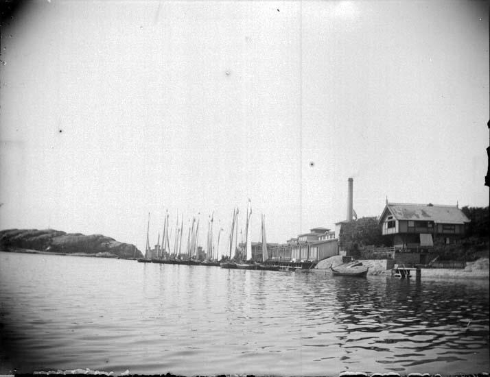 """""""Lysekil. Badhuset med Trampen och badgästbåtarne, taget utanför dambassinen 12/7 1899."""" enligt text som medföljde bilden."""