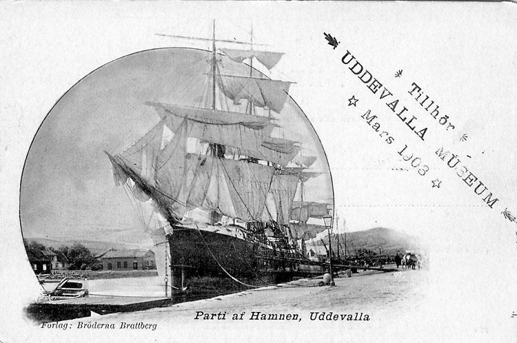 "Tryckt text på vykortets framsida: ""Parti af Hamnen, Uddevalla"".  ::"