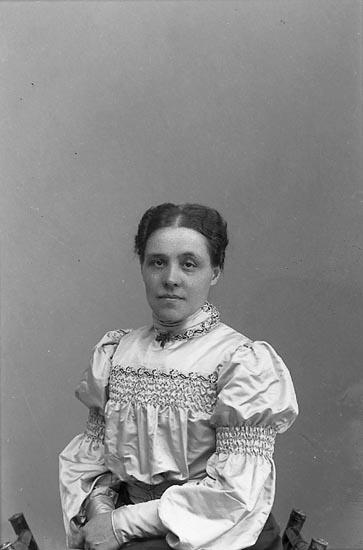 "Enligt fotografens journal nr 1 1904-1908: ""Tidholm Doktorinnan Jörlanda""."