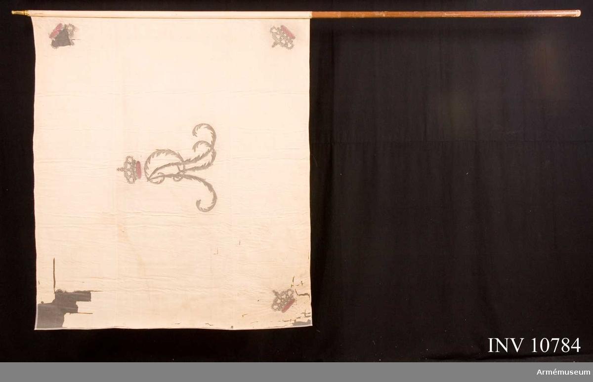 Grupp B.  Svea livgarde. Duk av vit sidenkypert med i mitten Gustav IV Adolfs namnchiffer under sluten kunglig krona. I hörnen slutna kungliga kronor liknande namnchiffrets. Duken är kantad med  vitt sidenband och fäst vid stången med vitt sidenband och förgyllda spikar. Den övre yttersta hörnkronan saknas. För övrigt är fanan väl bibehållen. Den är helt konserverad i crepeline. Stången är brun och avsågad. Holk och spets saknas. Det nummer som står på stången är AM 3779 (svårtytt?).Ytterligare en fana har detta nummer nämligen en vid Stockholms Borgerskaps 3 kompani.