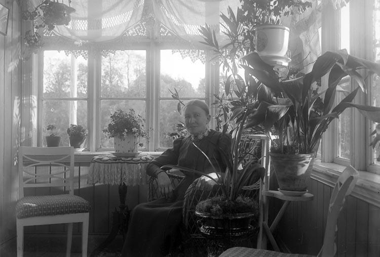 """Enligt fotografens journal nr 2 1909-1915: """"Josefsson, Fru Vestergård""""."""