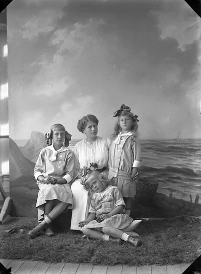 "Enligt fotografens journal nr 2 1909-1915: ""Kindal, Konsul Carl, Ön (barnen)""."