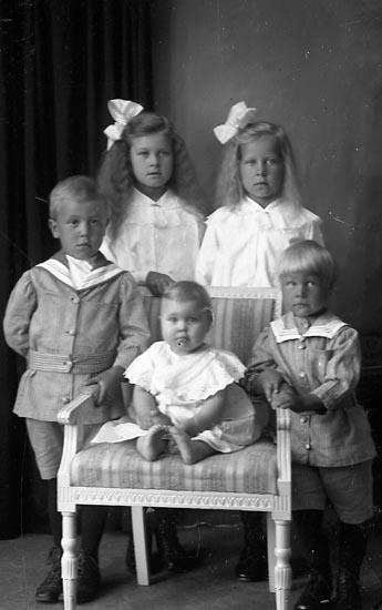 "Enligt fotografens journal Lyckorna 1909-1918: ""Oskar Larsson Strandala Ljungskile""."