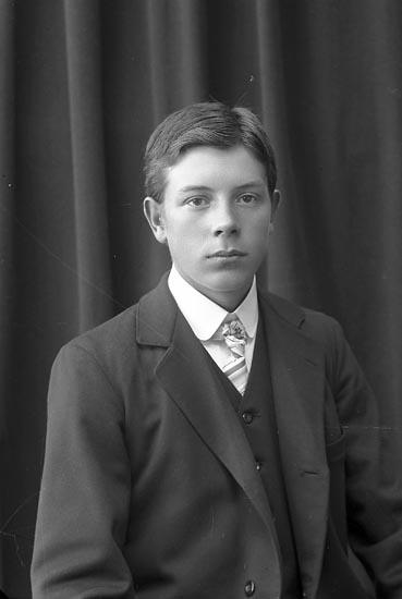 """Enligt fotografens journal nr 2 1909-1915: """"Berntsson, Arthur Munkeröd Här""""."""