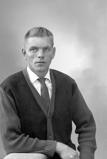 """Enligt fotograrens journal nr 9 1958-: """"Johansson, Herr Leif Kleva, Spekeröd""""."""
