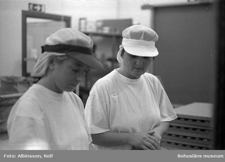 """Enligt fotografens noteringar: """" ... närmast i bild Birgitta Karlsson och Anne-Maj Karlsson tar sig an burkarna och lägger dom i brickor."""" ( AC. Fortsättning från bild 235.) Fototid: 1996-01-19."""