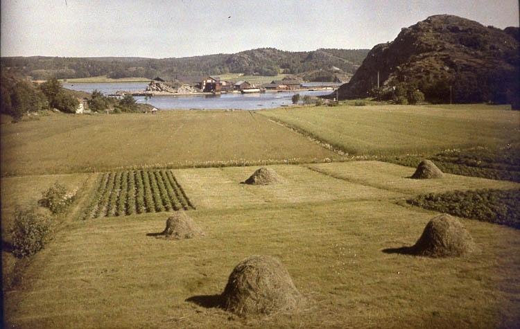 Badökajen, Skeppsviken och Lövåsberget, Uddevalla 1928