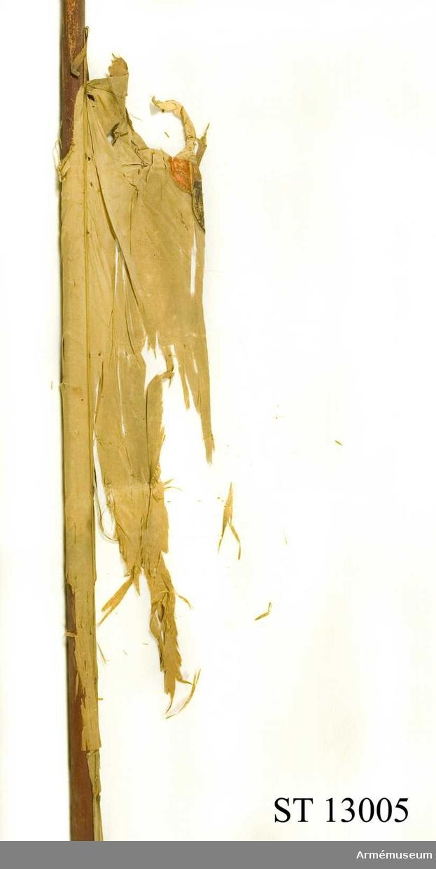 Stång (bemålad) med fragment, band och tännlikor. Spets bevarad.
