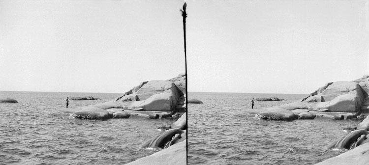 30 Juni 1902. Borgen, en udde med Emil på (Stereo karta III)