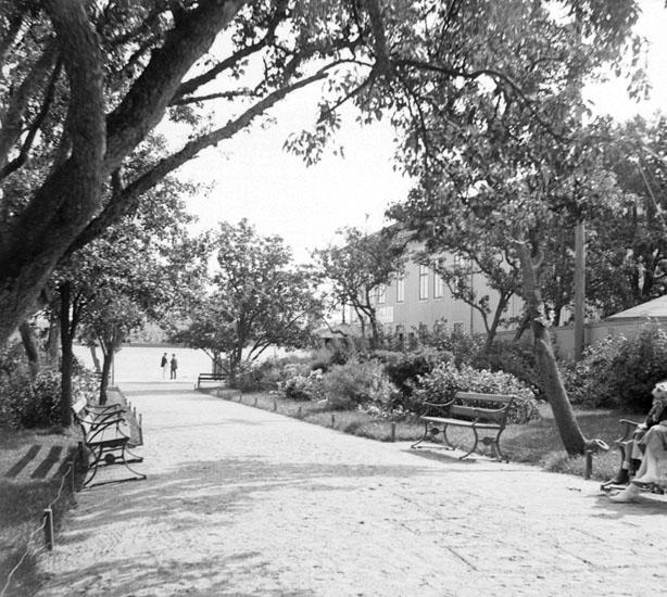 (Stereo karta XVIII) Stadsparken. 26 Augusti 1926.