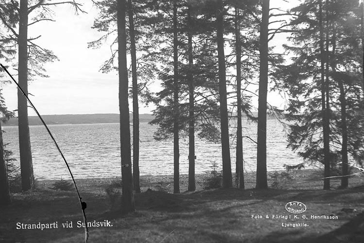 """Text till bilden:""""Strandmotiv vid Sundsvik""""."""