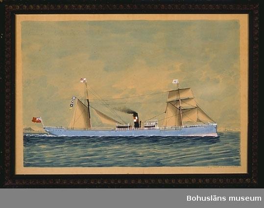 """Segel- och ångfartyget """"Wellfield"""""""