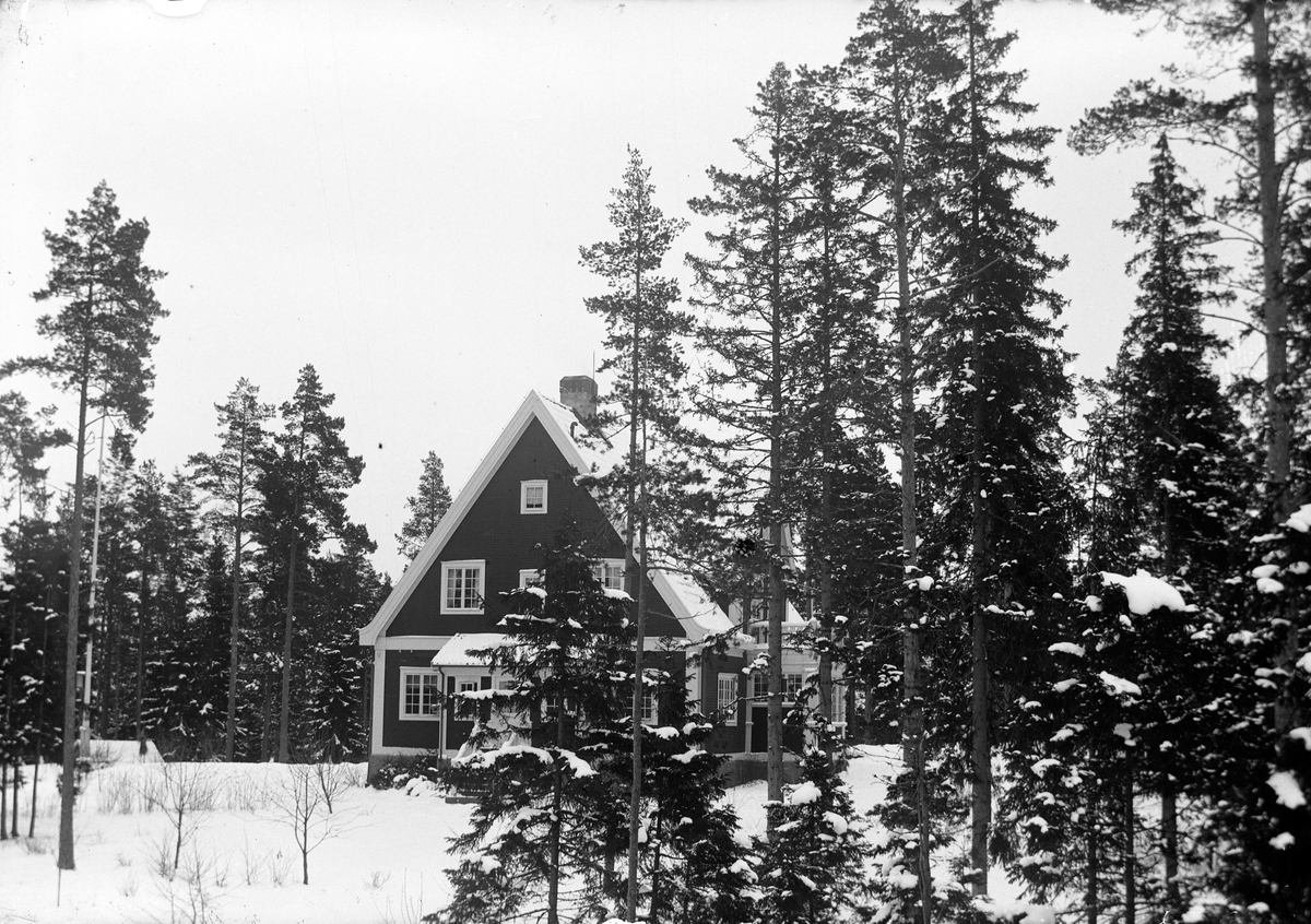 Ett Trähus med spetsig gavel i skogen bland barrträd.