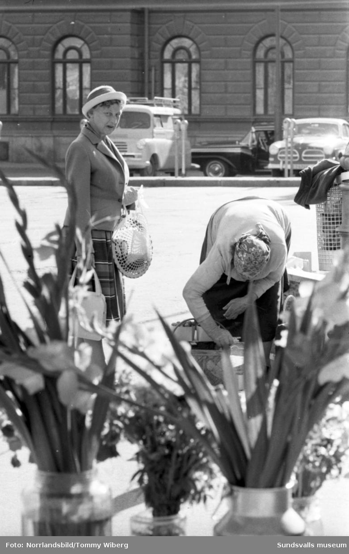 Torgkommersen är i full gång och mängder av frukt, bär, grönsaker och blommor finns till försäljning. Bilderna tagna till ett reportage i Dagbladet.