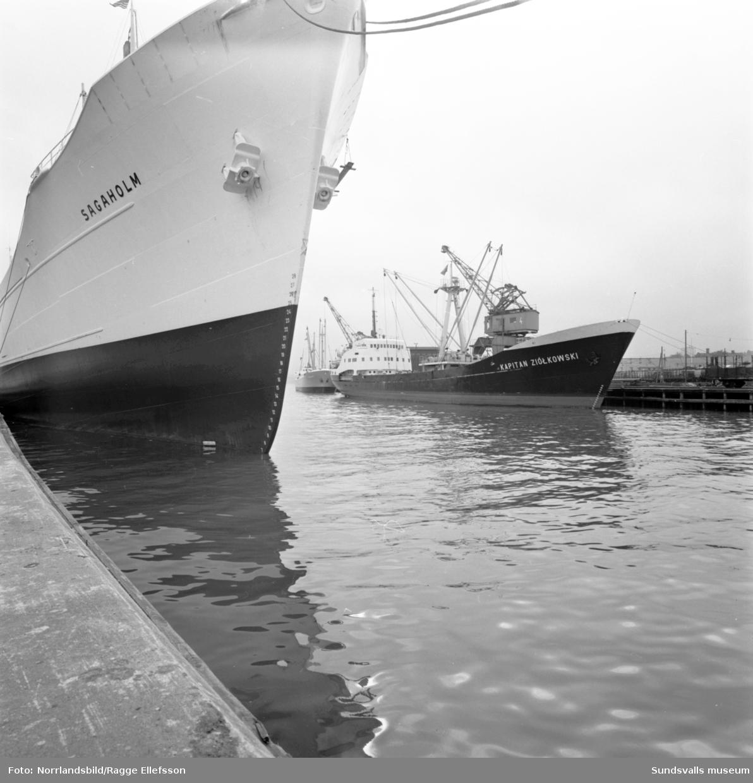 Fartygen Sagaholm och Kapitan Ziolkowski ligger vid kaj i Sundsvalls hamn.