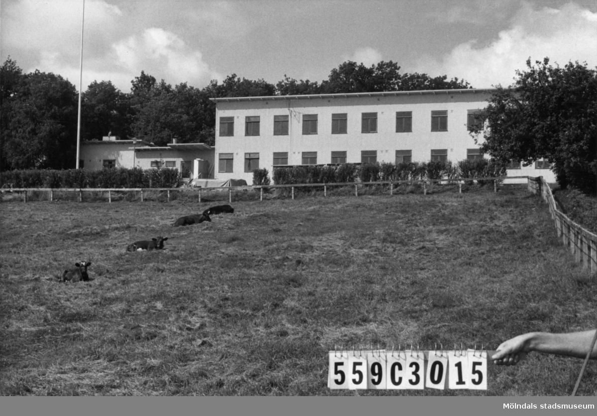Byggnadsinventering i Lindome 1968. Fagered. Hus nr: 559C3015, t. yrkesskolan. Benämning: yrkesskola. Kvalitet: god. Material: trä. Tillfartsväg: framkomlig. Renhållning: soptömning.