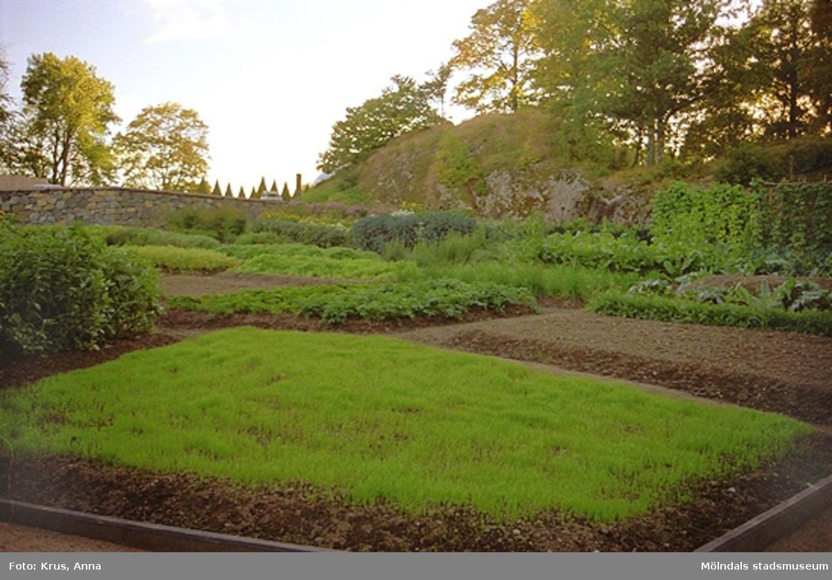 """Köksträdgården och """"tjänstefolksbyggnaden"""" i Gunnebo."""