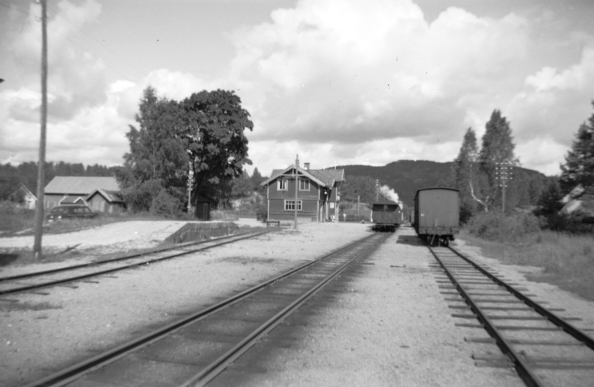 Fra Moisund stasjon på Setesdalsbanen