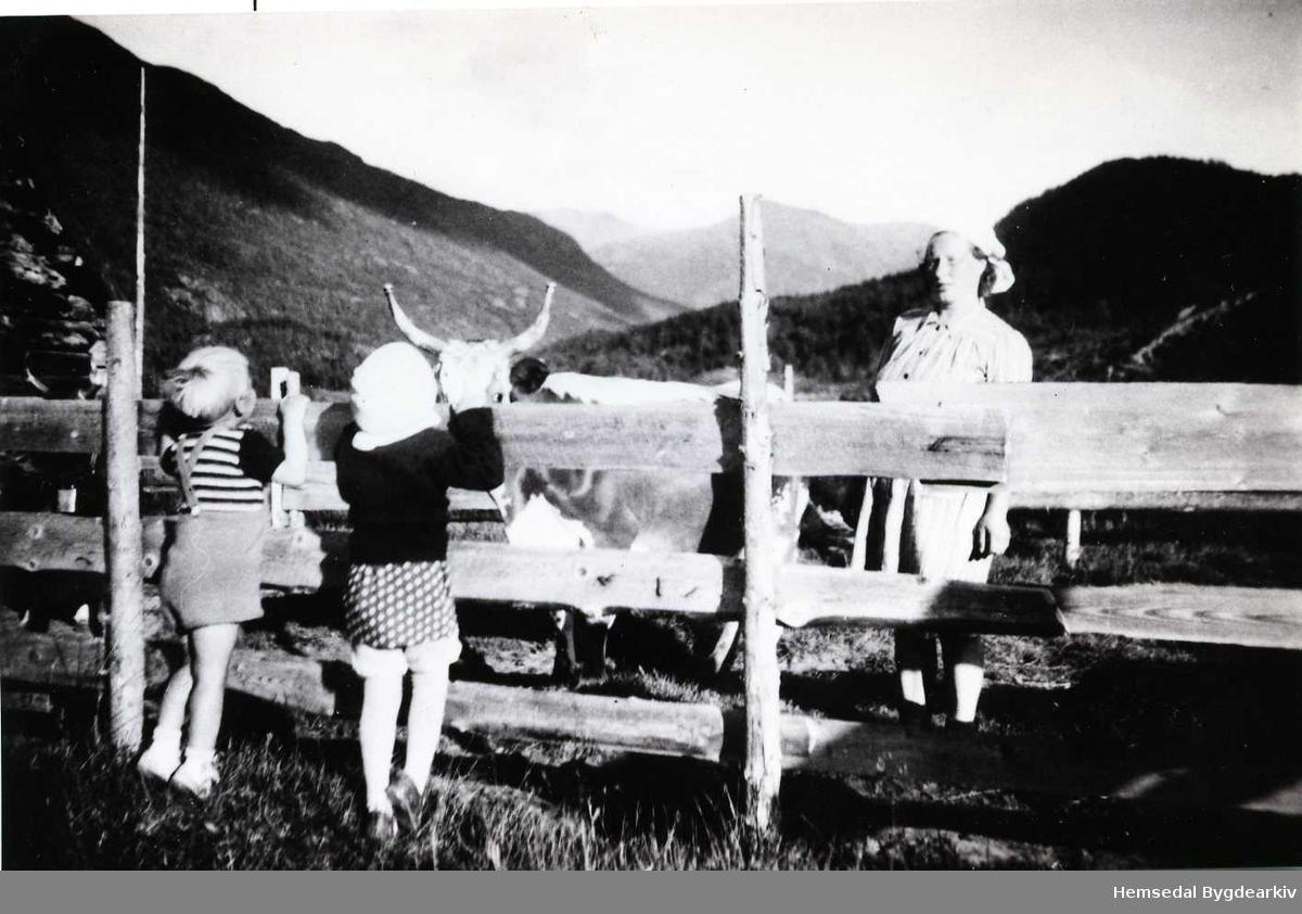Anna Wenthe  på stølen på Feten i 1947.