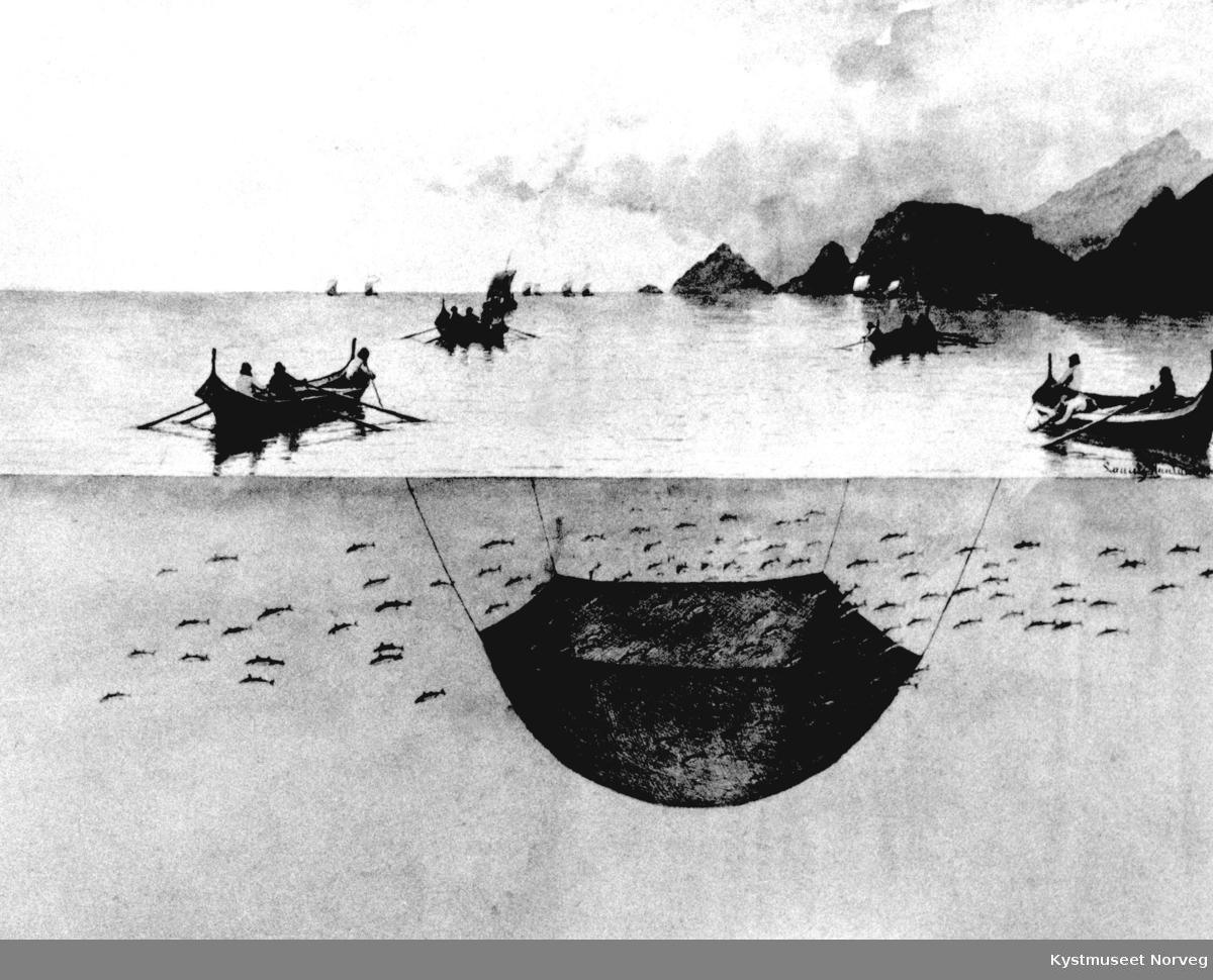 Fiskeredskap, tegning av synkenot