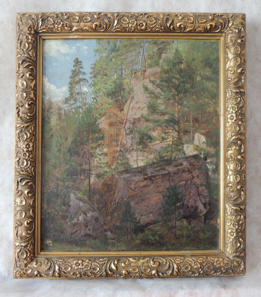 Skråning i skog. Trær. og steiner.