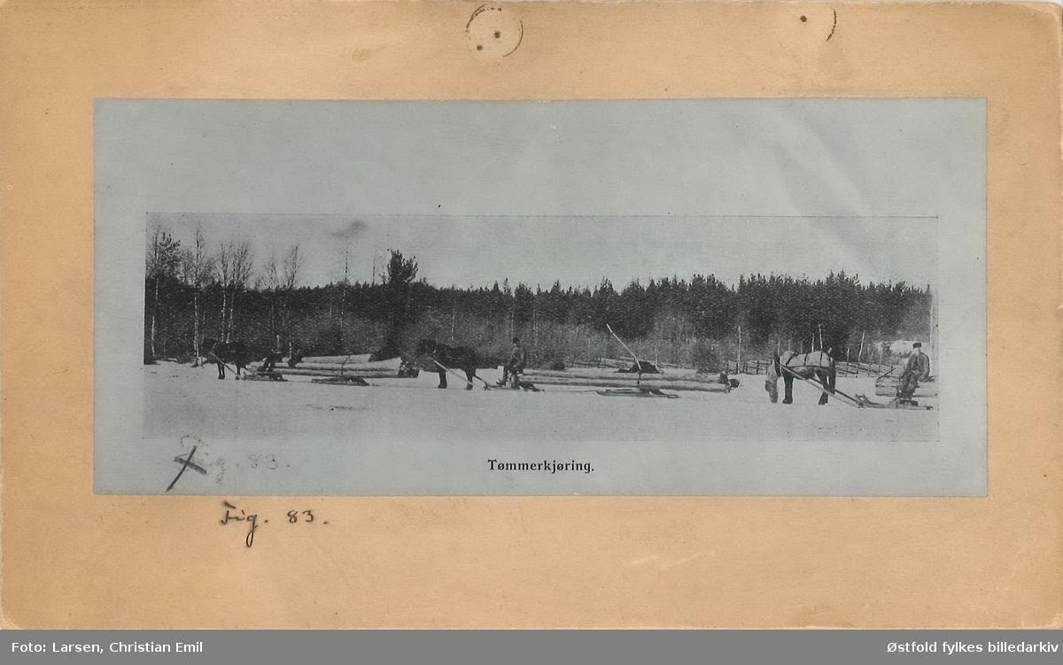 Kalnes landbruksskole, Tune, Sarpsborg ca. 1920. Tømmerkjøring med hest og slede.