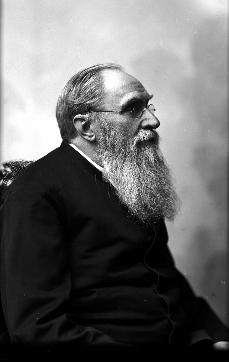Kyrkoherde Glantzberg. Hed, 1895. Fotograf: C Billberg.