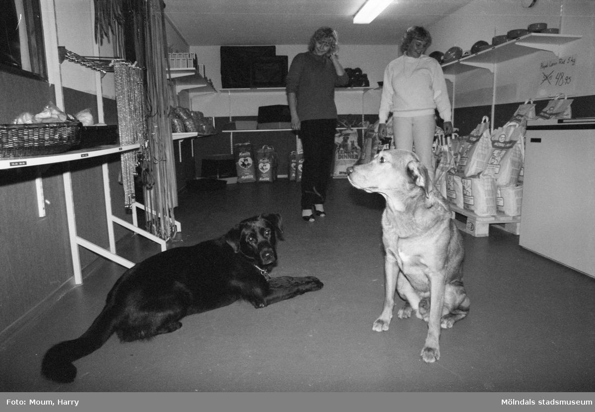 Annika Borg och Eva Nordin i deras nyöppnade hundbutik i Våmmedal, Kållered, år 1983.  För mer information om bilden se under tilläggsinformation.