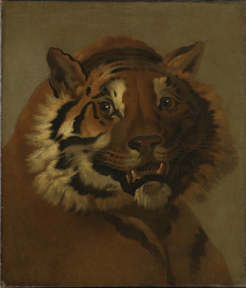 Tigerhode [Maleri]
